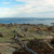 Facing north-ish atop Cadillac Mountain. Railings are there to protect the lichen.