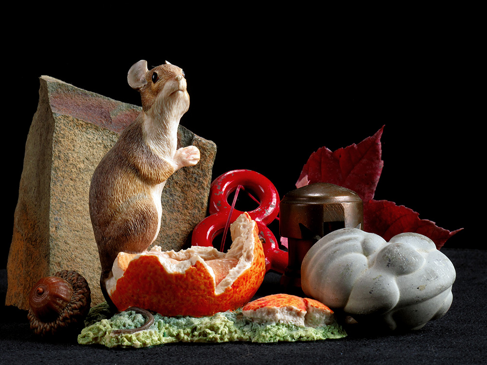 A piece of Bar Harbor, a stage screw, a leaf, a large acorn, one of my mother's many mouse figurines, one of three cotton scale weights that I liberated from an old mill building and a river rock that I think looks like a recumbent bunny. (Click image to up-rez.)