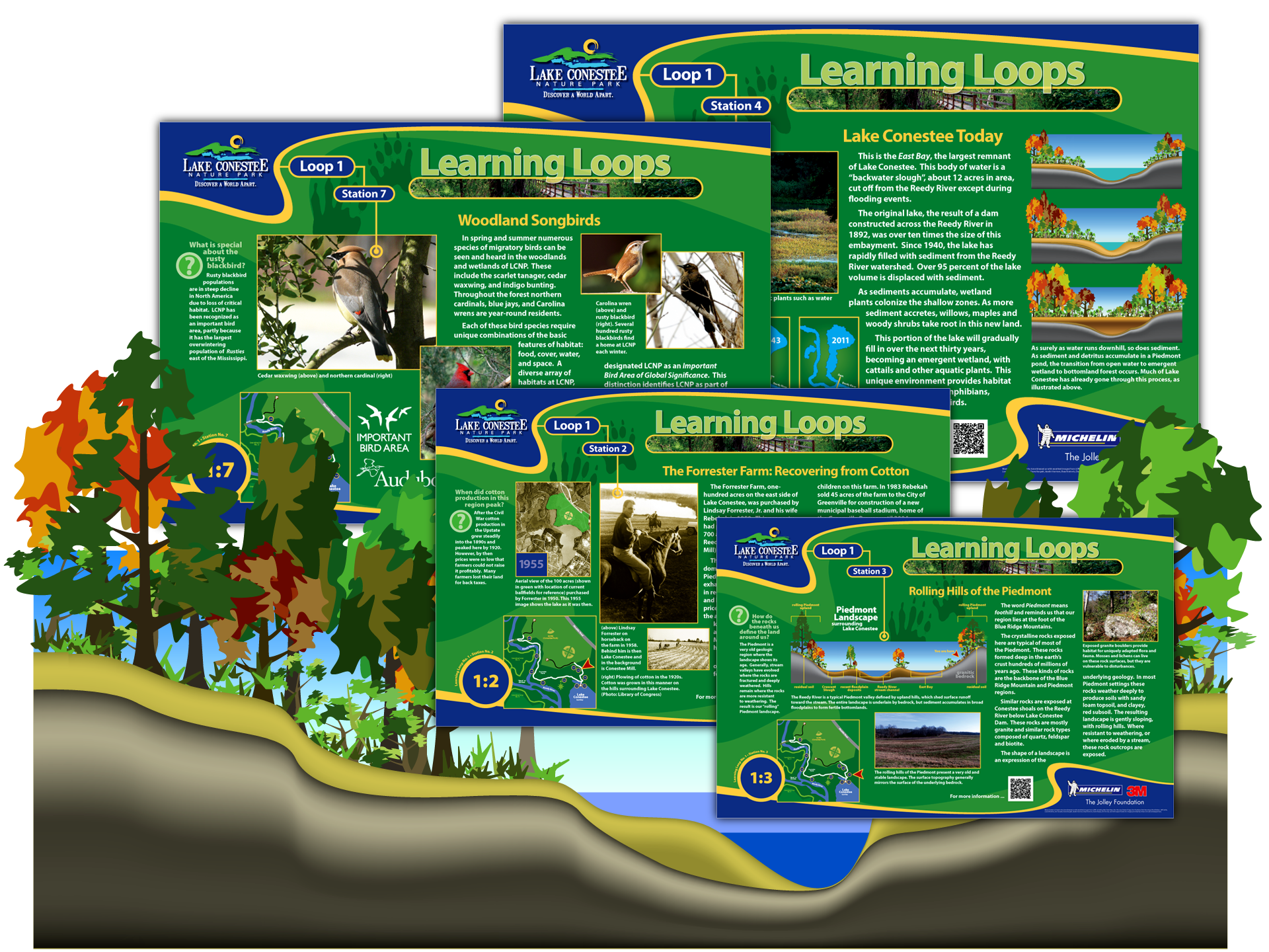 Original graphics and layout for nature park's interpretive signs